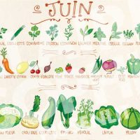 fruits-legumes-juin
