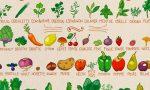 fruits-et-légumes-d'aout
