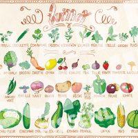 fruits-et-légumes-juillet