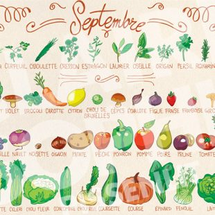 fruits-et-légumes-de-septembre
